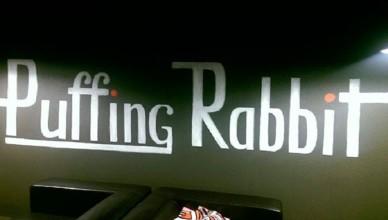 кролик-лого