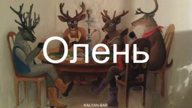 olen-logo-2